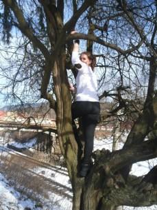 climb-trees-02