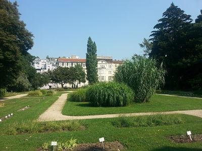 mopana-Belvedere-Palace-vienna-botanical-garden-02