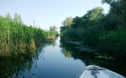 narrow-channels-in-the-danube-delta