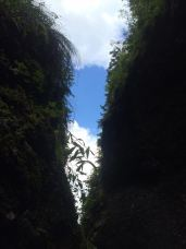 mopana-Seven-Ladders-Canyon-29