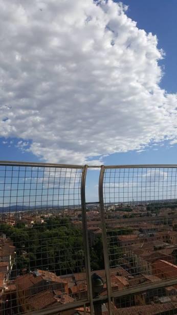mopana-Pisa-Tower-01