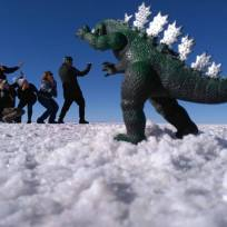 Playing in the Salar