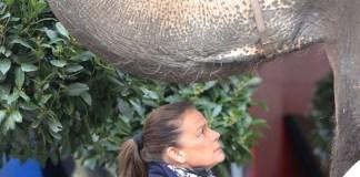 Stephanie di Monaco felpa Festival del Circo di Montecarlo 4