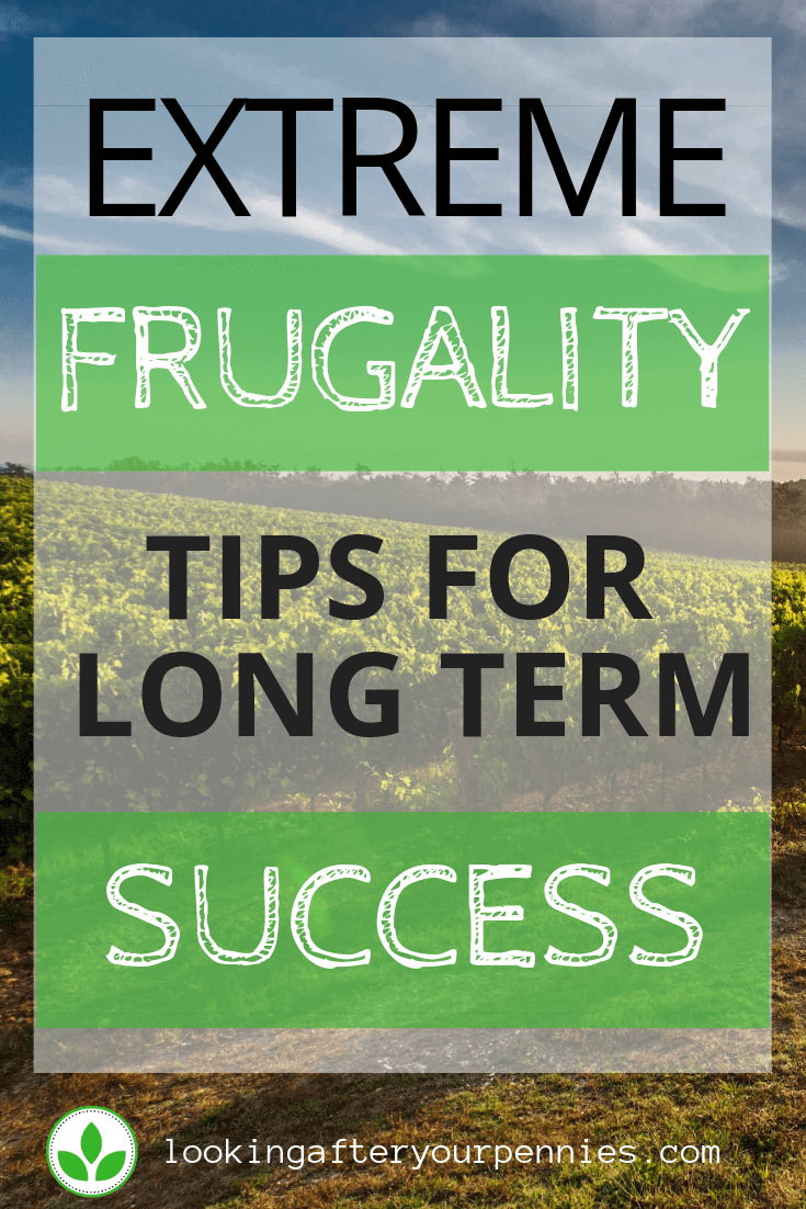 "Pinterest image stating ""Extreme Frugality Tips For Long Term Success"""