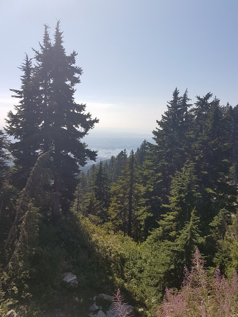 Grouse Mountain Vancouver