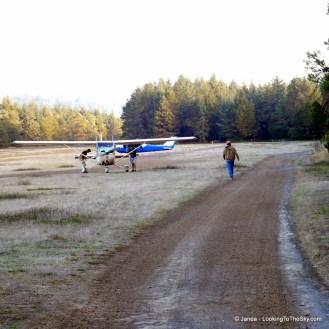 Pushing The Plane