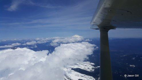 Mt. Adams Wing