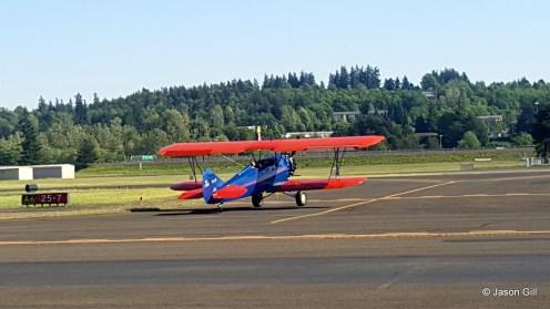 Red Blue Bi-Wing