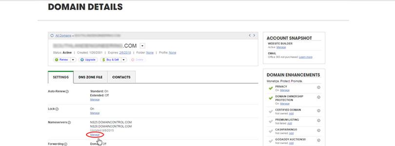 godaddy domain details
