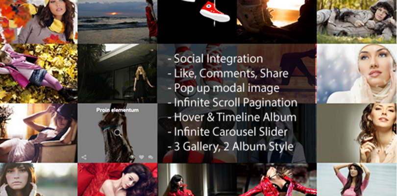Infinite Scroll WordPress Social Photo Gallery Plugin