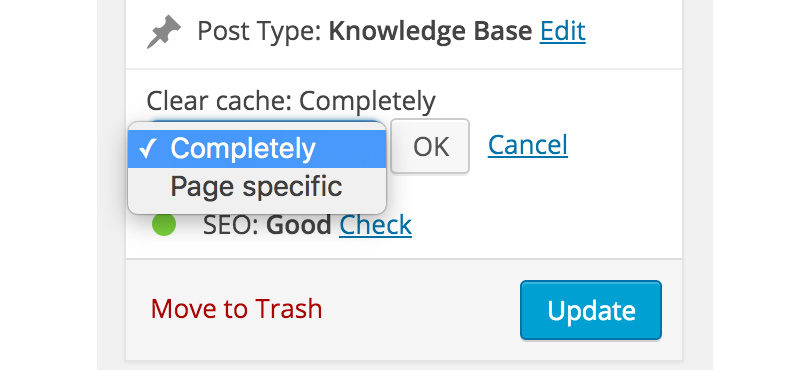 cache-enabler-wordpress-page-post-editor