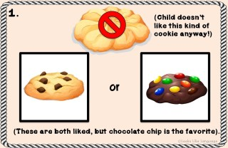 1. Make the 'NO' choice something that the child doesn't like.