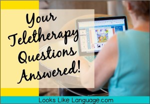 speech teletherapy questions, distance learning, Boom cards