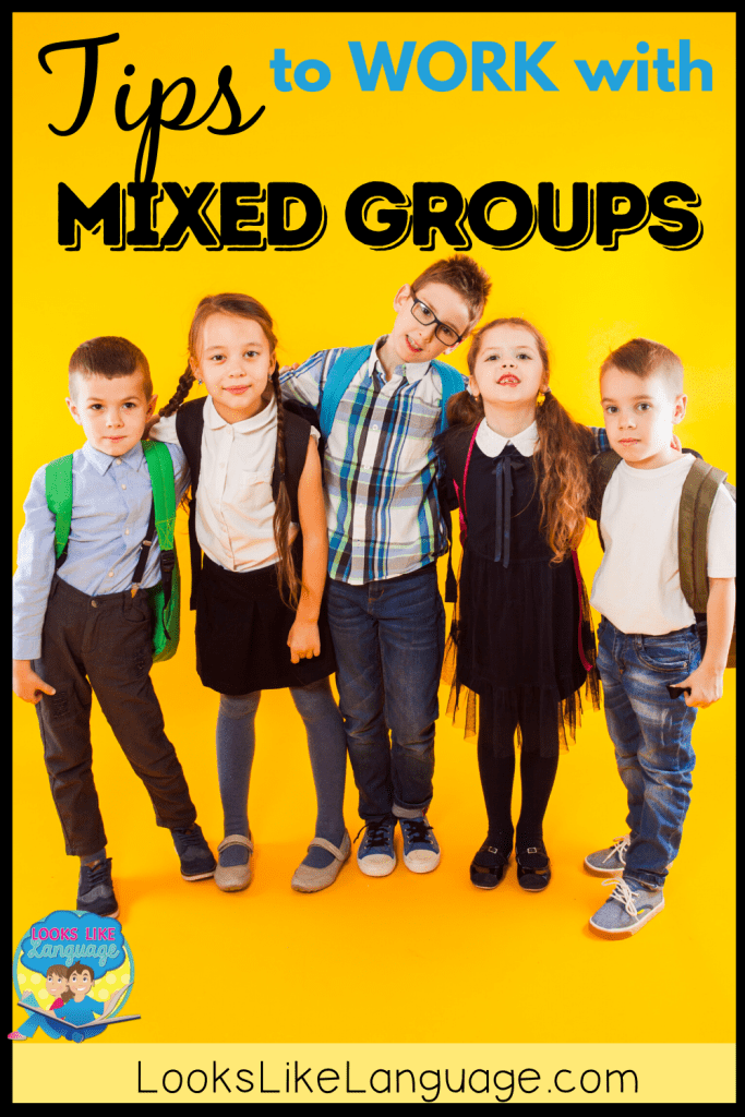 tips for mixed skill groups - speech therapy