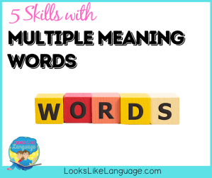 homonyms, multiple meaning words, speech therapy, autism tips