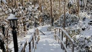 High Pastures Snow Bridge