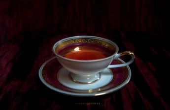 Tea Party Tidbits #12 - I'll Raise My Teacup to That!