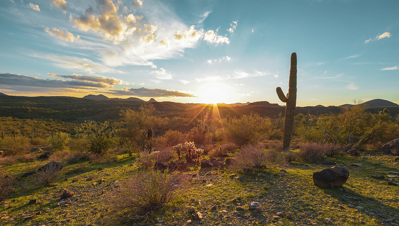 Day trips from Phoenix