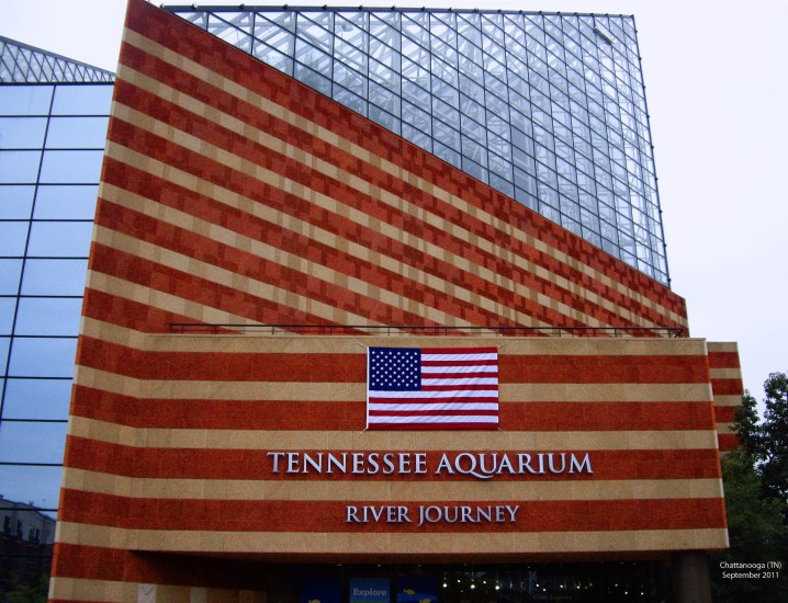 A must-visit place Tennessee Aquarium Chattanooga