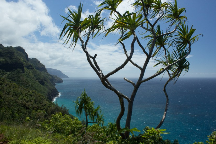 The Kalalau trail is one of the best place to visit in Hawaii.
