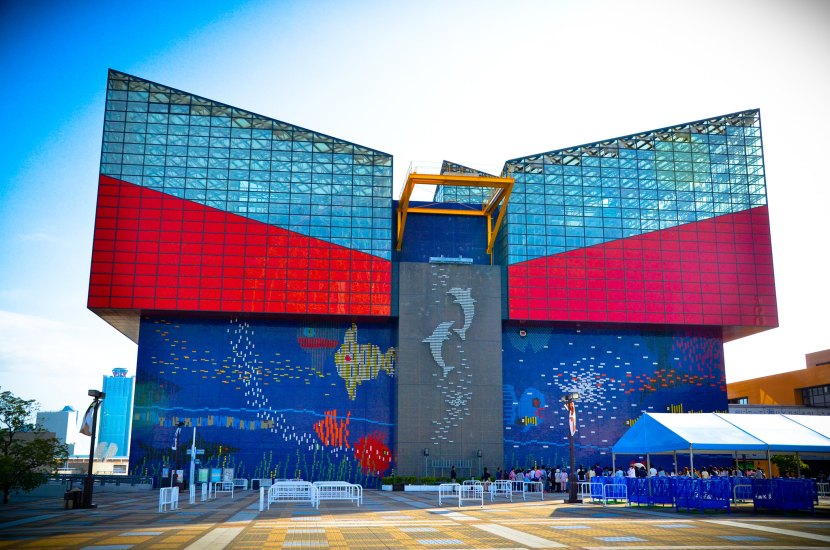 If you are looking for places to visit in Osaka along with your children, Osaka Aquarium is just the right place for you.