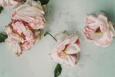 covid-19-wedding-season