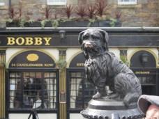 Bobby the Famous Dog