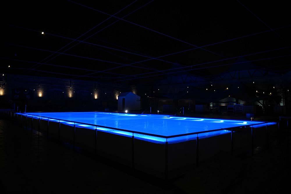Haubentaucher Berlin Pool Winter Night