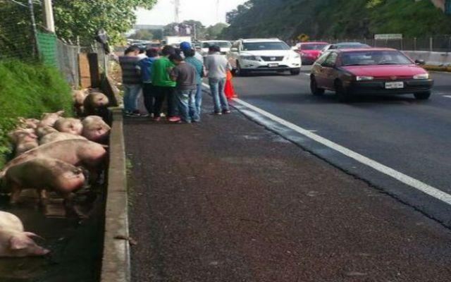 Caos vial por volcadura de camioneta en Chamapa-Lechería - Foto de @Foro_TV