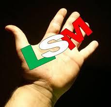 Mensaje presidencial incluyó lengua de señas - Lengua de señas mexicana