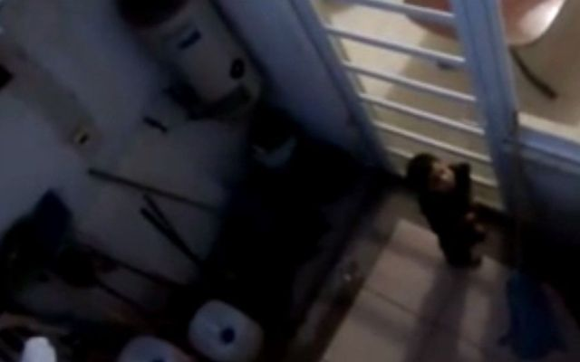 Graban maltrato infantil en casa hogar de Guanajuato - Foto de Youtube