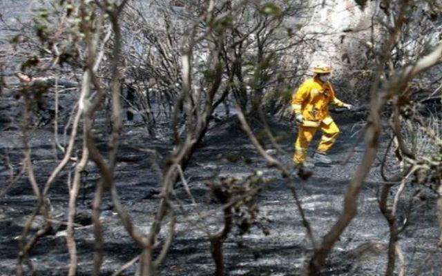 Australianos dejan sus casas por avance de incendios - Foto de AP