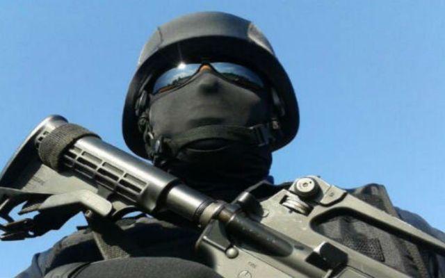 Abaten a 5 integrantes de La Línea - Policía Federal