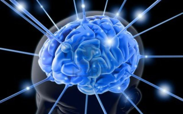 Siete factores que reducen la inteligencia - Foto de archivo