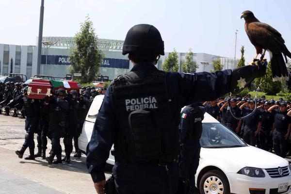 Esperaremos investigación de PGR sobre Tanhuato: Enrique Galindo - Foto de @PoliciaFedMx