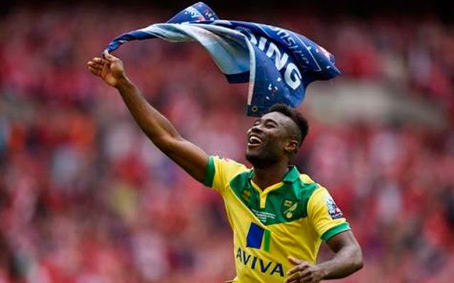 Norwich regresa a la Premier League - Foto de Norwich City FC