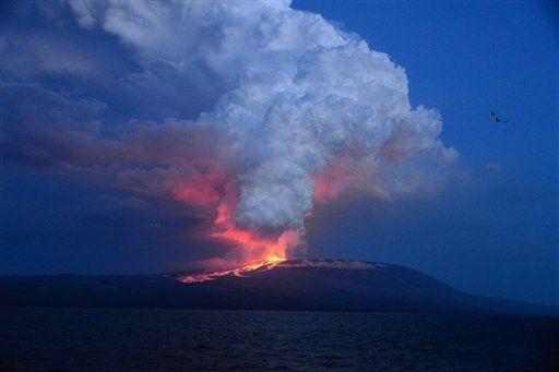 Volcán Wolf  hace erupción - Foto de AP