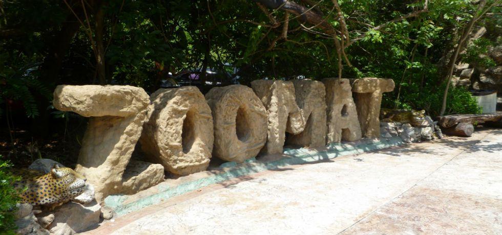 Cierran zoológico de Chiapas por influenza - Zoomat