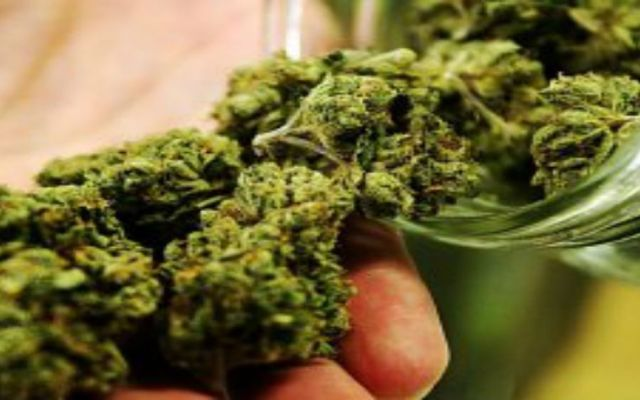 No legalicen la mariguana, aumenten dosis personal: Mondragón - Foto de laverdad.es