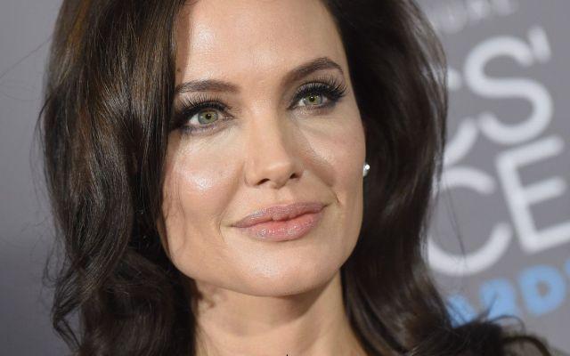 Estoy acostumbrada a las críticas: Angelina Jolie