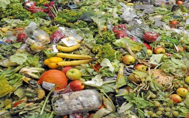 México desperdicia el 37 por ciento de sus alimentos: FAO
