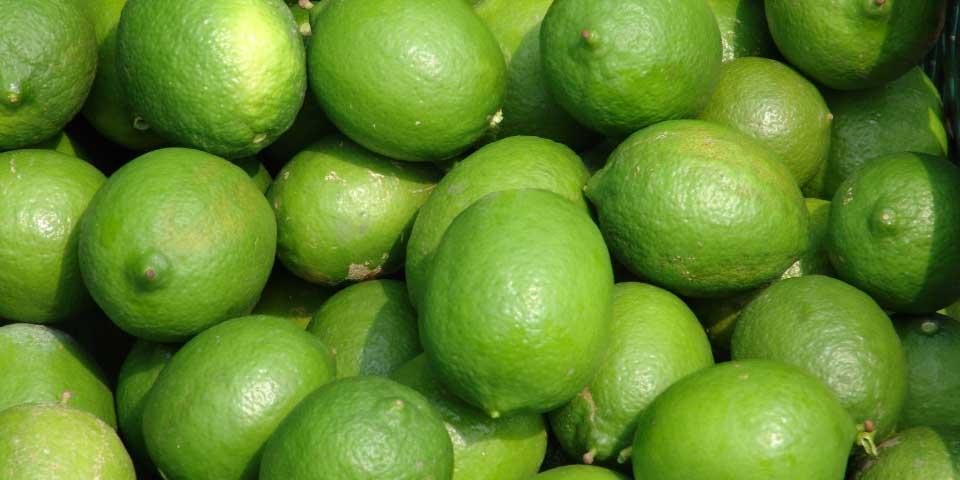 Precio de limón disminuye en algunos estados - Foto de internet