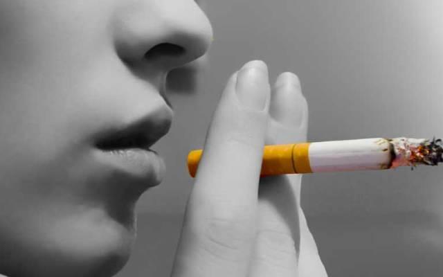 Foto de hodgsonfitness.com