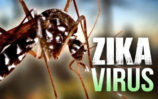 Virus del Zika también afecta el cerebro de los adultos