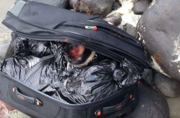 Aparece cuerpo desmembrado en una maleta en Veracruz
