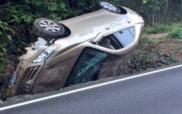 Araña provoca accidente vial en Oregon - Foto: Internet