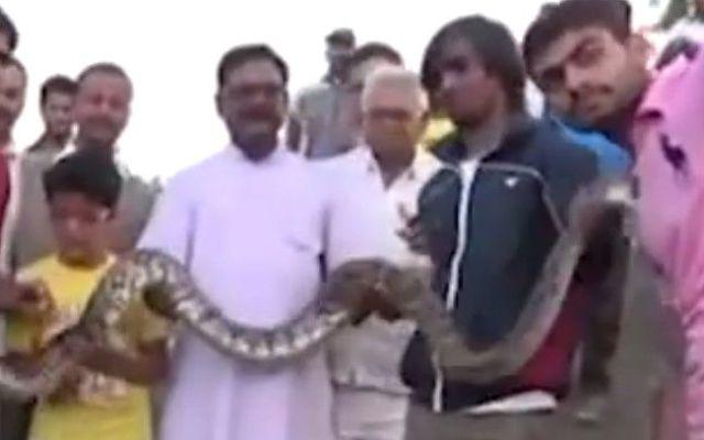 Video: anaconda muerde a hombre durante selfie - Foto de Internet