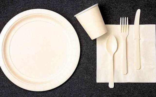 Francia prohíbe el uso de platos, vasos y cubiertos de plástico - Foto de Internet