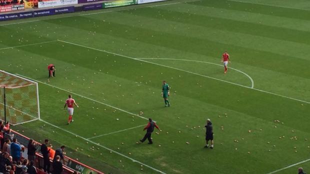 Video: aficionados en Inglaterra lanzan cerditos de plástico al campo