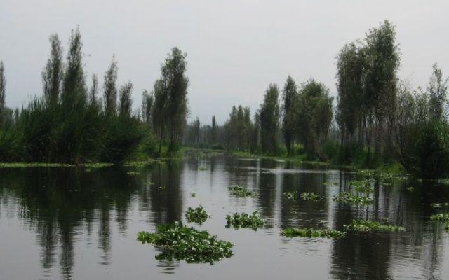 Limpian los canales de Xochimilco